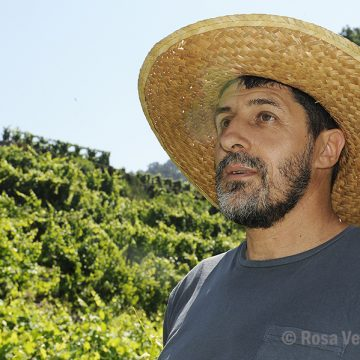 Antón… e os socalcos milenarios do Ribeiro